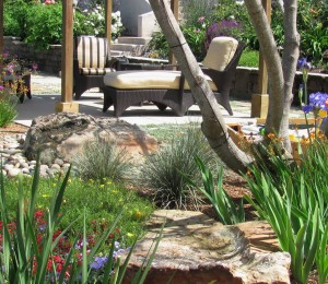 a backyard landscape centers on a shady sitting area