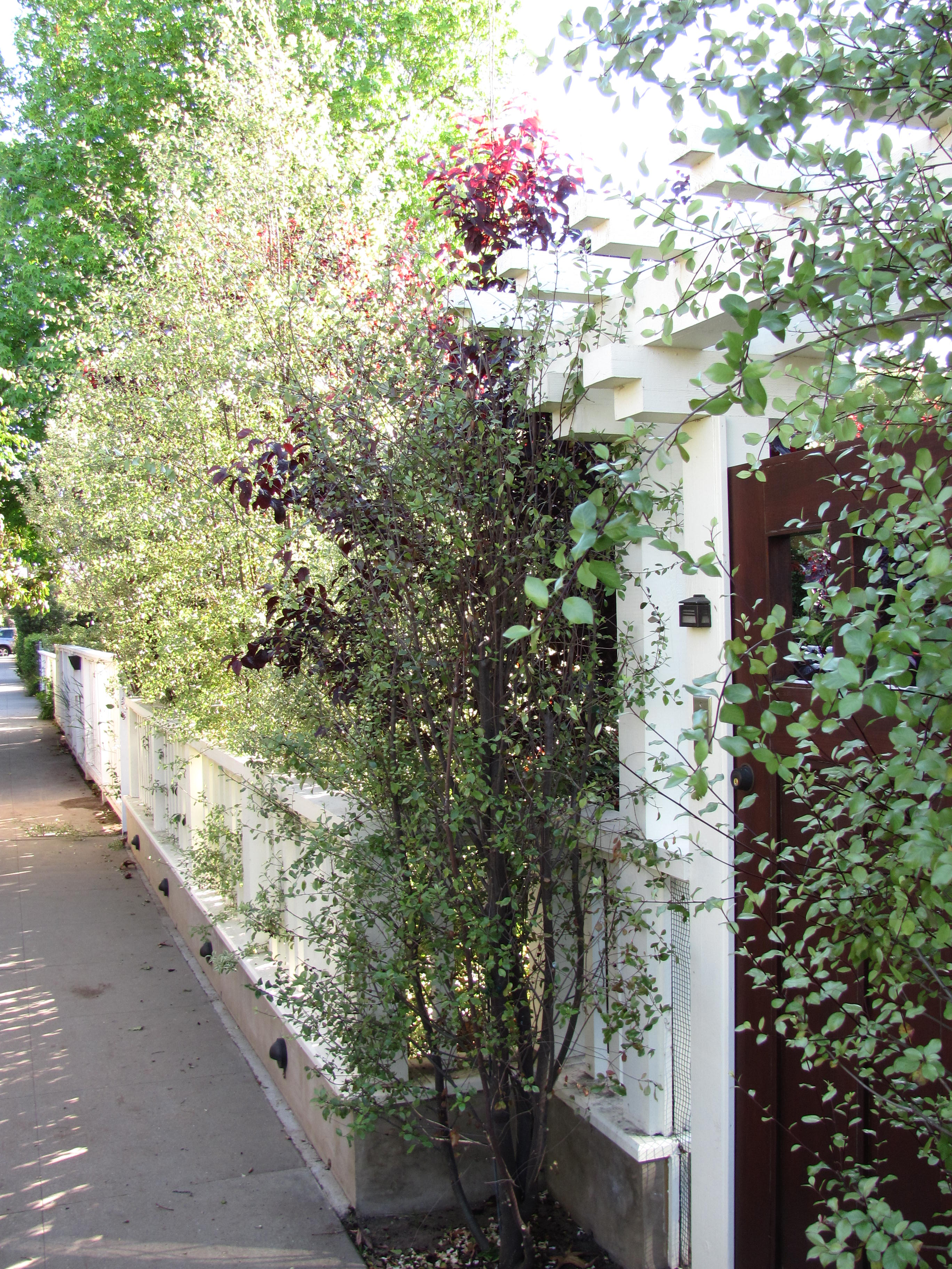 THE PERFECT RENOVATION - GATES, WALLS AND FENCING