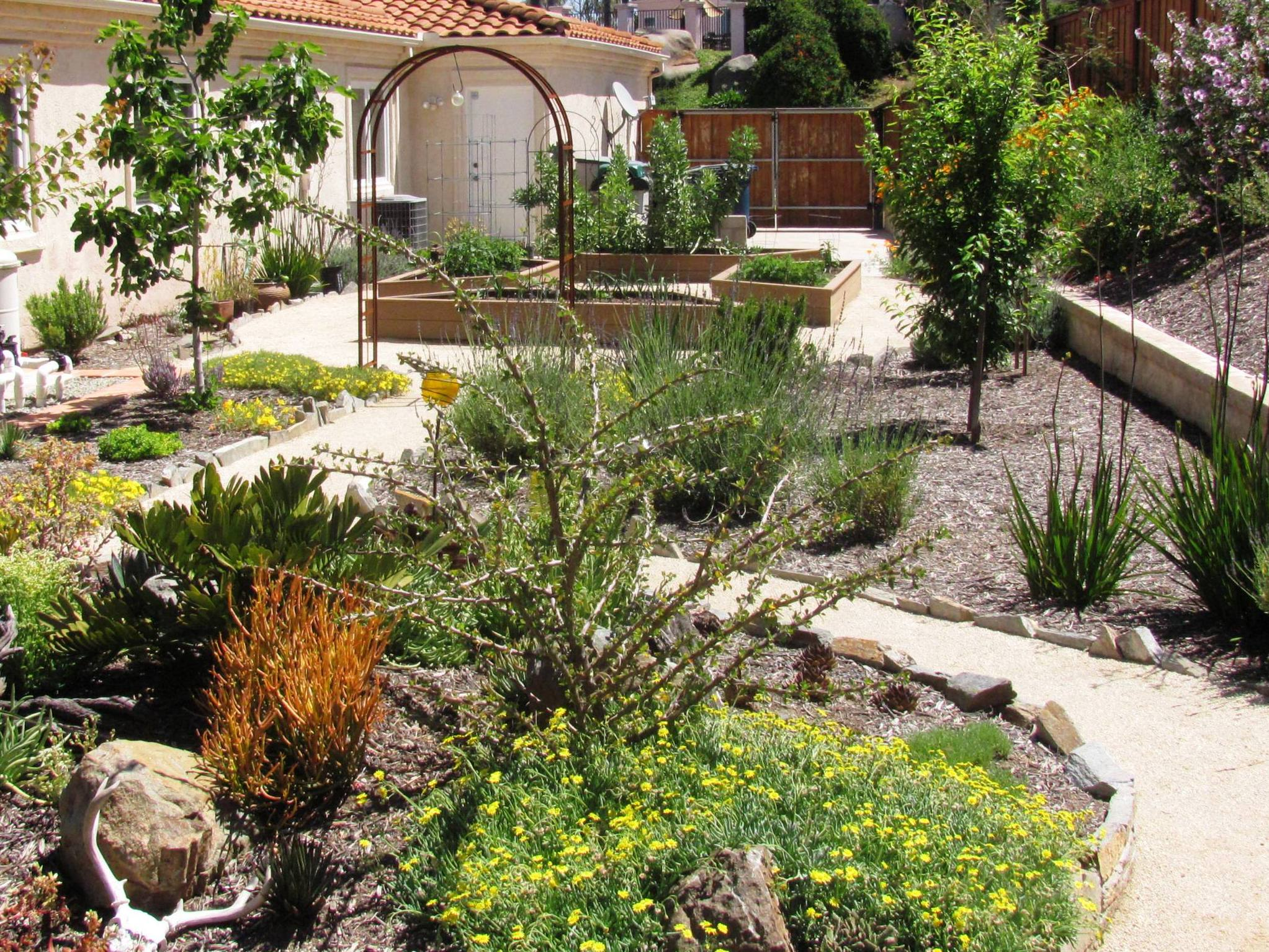 Learn For Design Arizona Backyard Landscaping Pictures 6039s Fashion