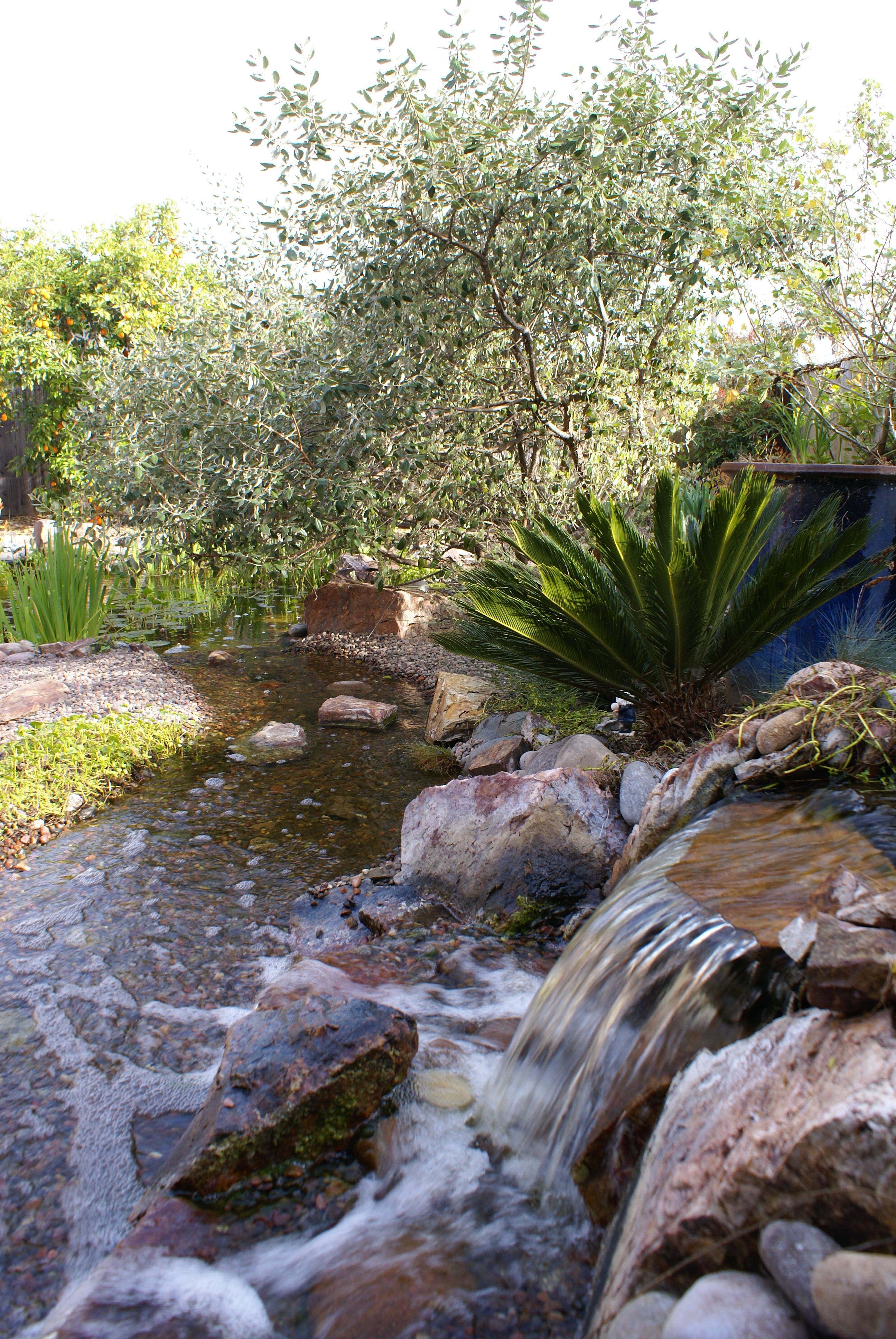 San diego landscape designers - Portfolio San Diego Gardens With Water Features